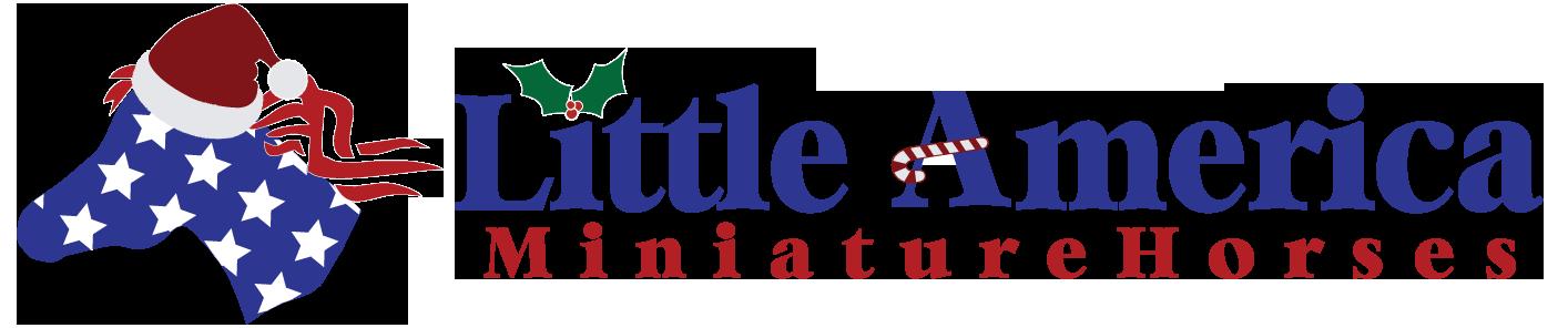 Little America Miniature Horses
